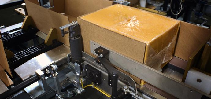 Cheese Block Case Packer